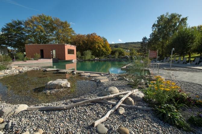 Natur-Schwimmbecken