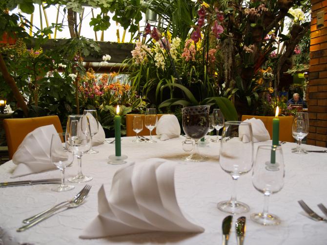 Tropenpflanzen Restaurant