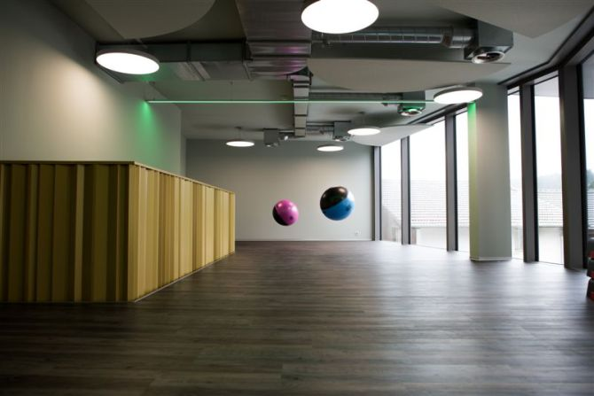 Swiss Balls - Personal Training Area