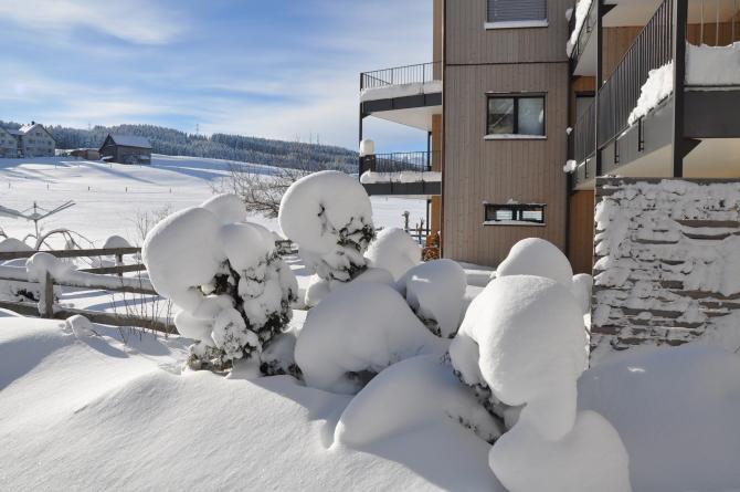 Gartenanlage Winter