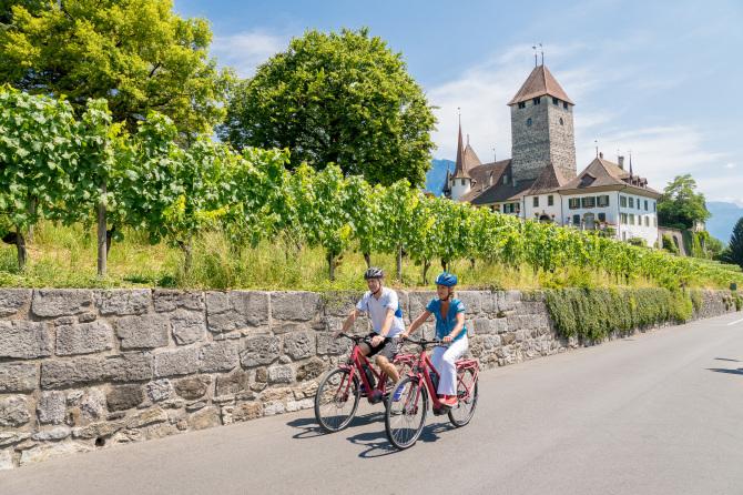 Hotel Eden Spiez - Fahrradtouren
