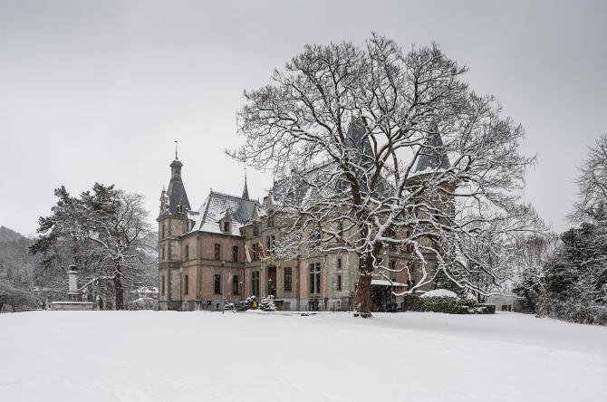 Schloss Schadau Winter