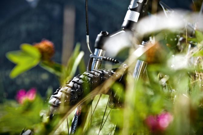 Mountainbike & E-Bikes