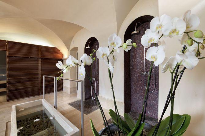 Sauna Bereich Novums Spa Wellnessoase